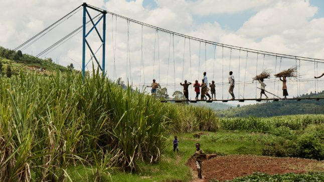 People are seen walking across a bridge over a field