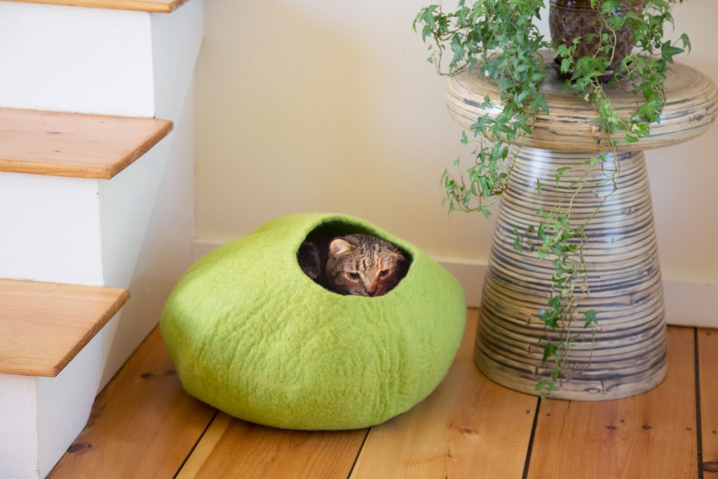 A tabby cat is seen all snuggled up in a green wool cat cave from Le Sharma Trading
